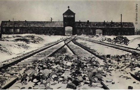 29_Gates_Railway_and_Tower_at_Auschwitz_Birkenau[1]
